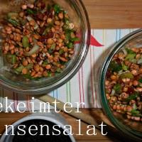 Gekeimter Linsensalat
